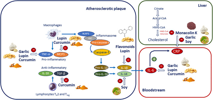 Impact of nutraceuticals on markers of systemic inflammation